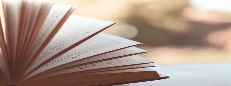 パラパラとページをめくられる本