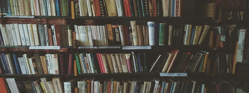 たくさんの本が並べられた本棚
