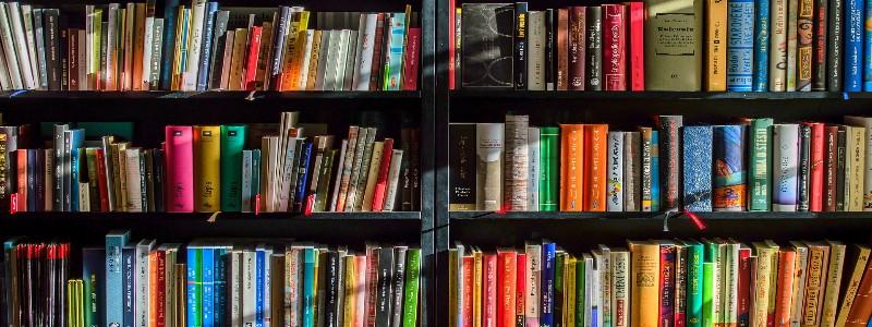 本が敷き詰められた本棚