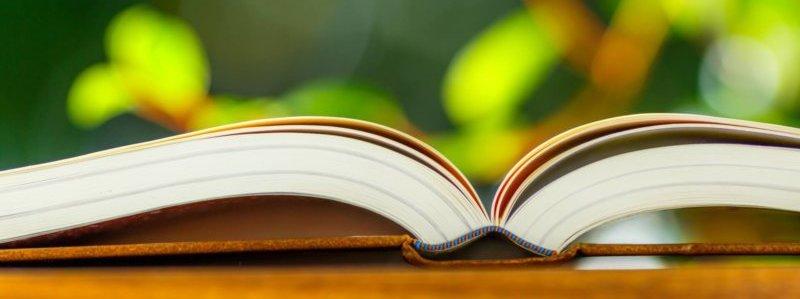 初心者でもWEB集客に必要な知識が得られる本のイメージ画像